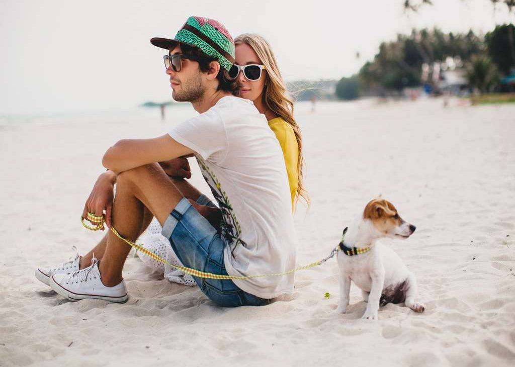 Planning a Trip To Florida for You and Your Furry Friend