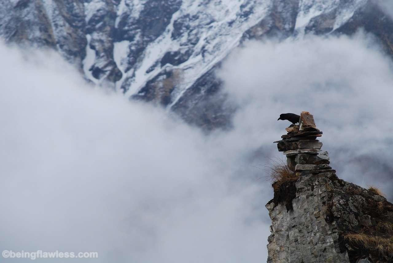 Annapurna Sanctuary,Nepal