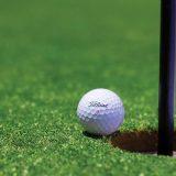 Golf Ball Lying On Ground