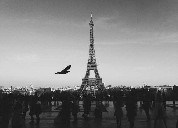 Eiffel Tower Black & White,Paris